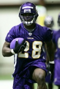 adrian peterson vikings camp